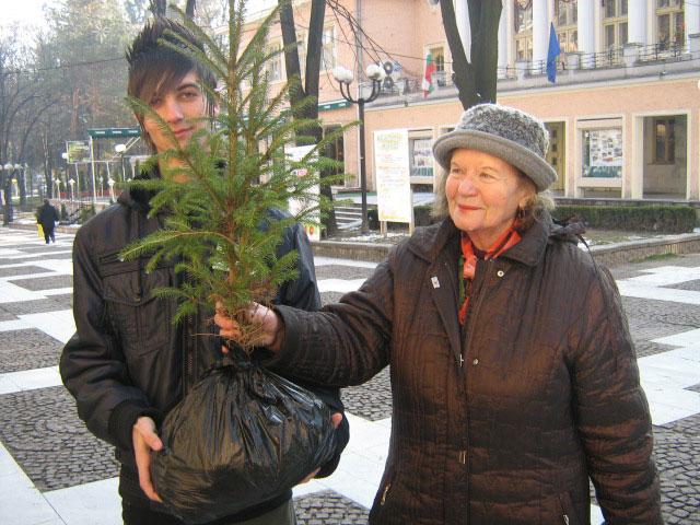 Първите които си купиха дръвчета